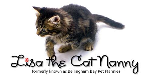 header-cat-nanny-01