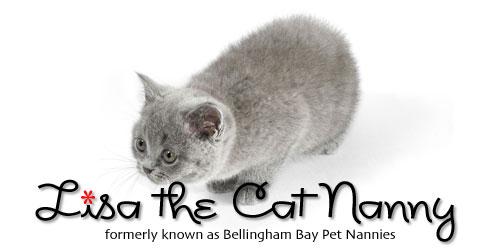 header-cat-nanny-02