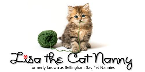 header-cat-nanny-05